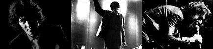 picture: Yusaku Matsuda in concert