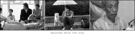 picture: scenes from 'Walking with the Dog'