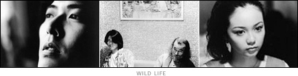 picture: scenes from 'Wild Life'